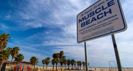 muscle-beach-